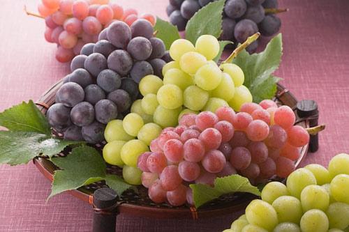 Rượu nho nguyên chất, rượu vang, mật nho, rượu nho phan rang